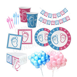 China Cute Kids Party Decorations , Gender Reveal Disposable Party Tableware factory